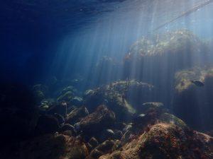 神奈川県真鶴にある岩ビーチ、エントリー口